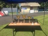 Puchary i trofea ustawione na stoliku